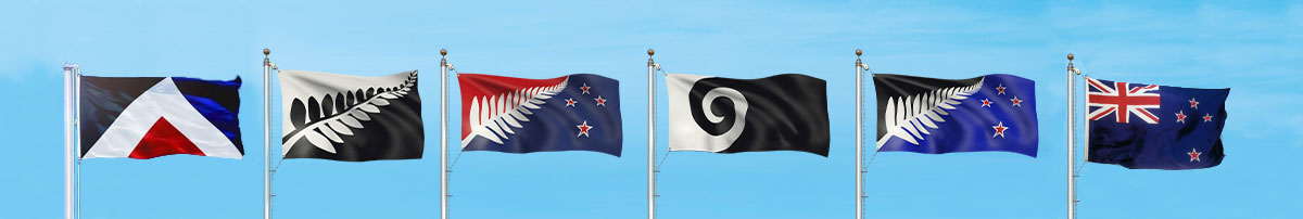 Dunedin, let's fly the flags feature image